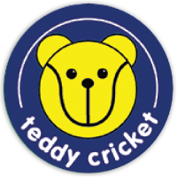 Teddy Cricket